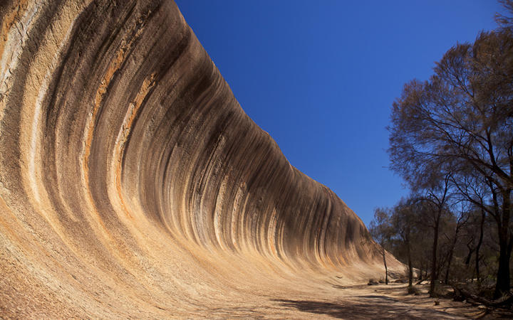 Wave Rock in der Nähe von Hyden © David Steele / Shutterstock.com