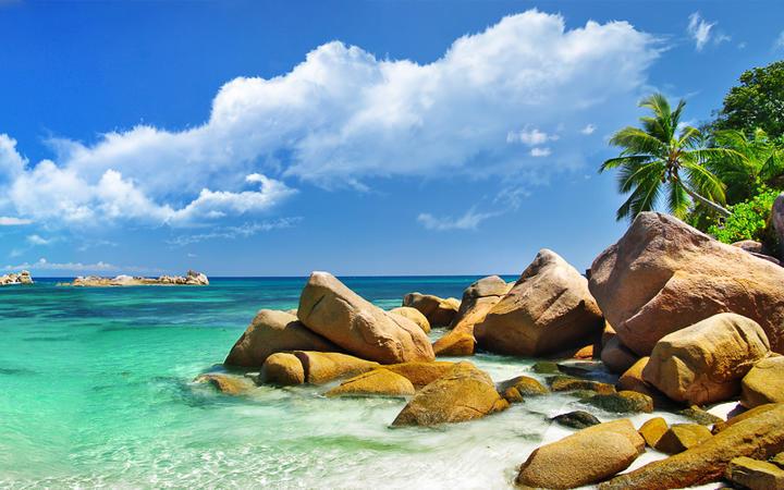 Küstenlandschaft der Seychellen © leoks / Shutterstock.com