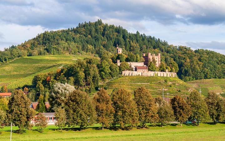 Blick auf das Ortenberg Schloss im Schwarzwald, Deutschland © Leonid Andronov / shutterstock.com